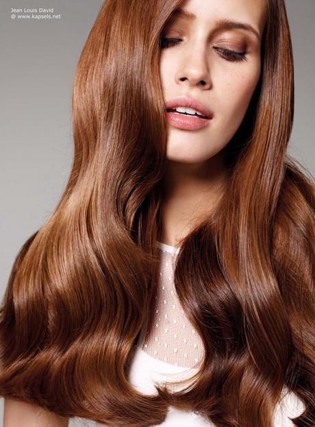 Bruine Haar Kleuren