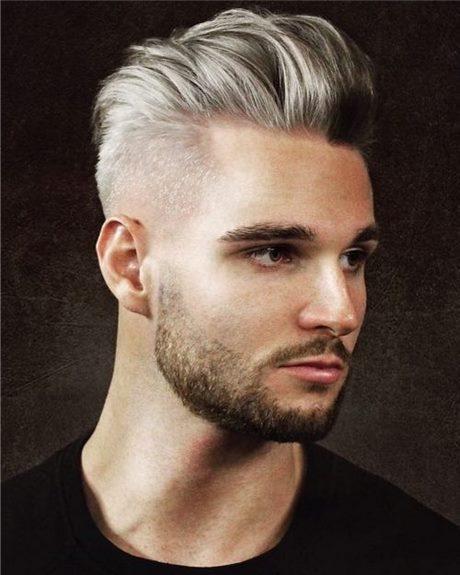 Mannen Met Grijs Haar